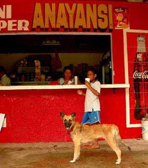 coke dog